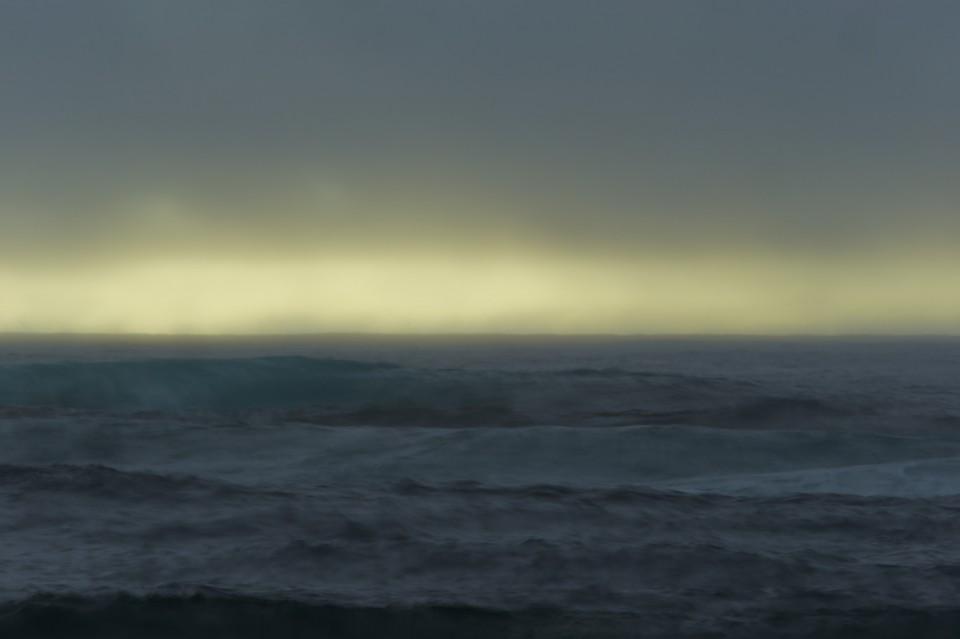 wild azores image 8